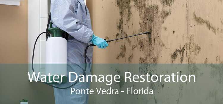 Water Damage Restoration Ponte Vedra - Florida