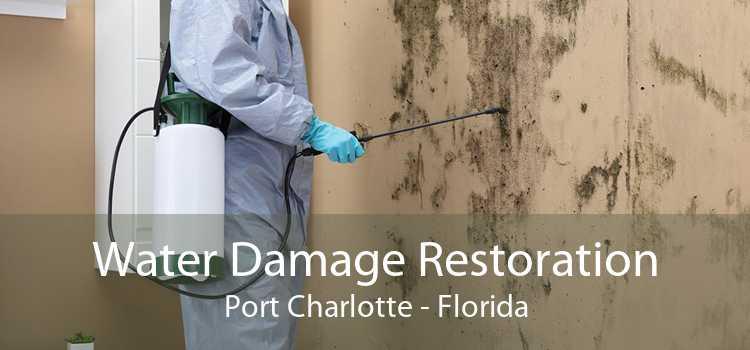 Water Damage Restoration Port Charlotte - Florida