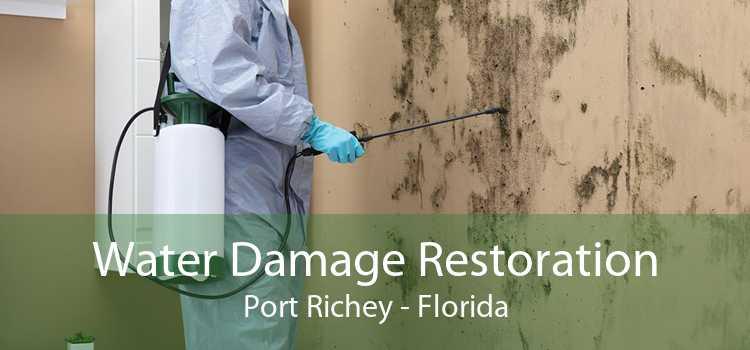 Water Damage Restoration Port Richey - Florida