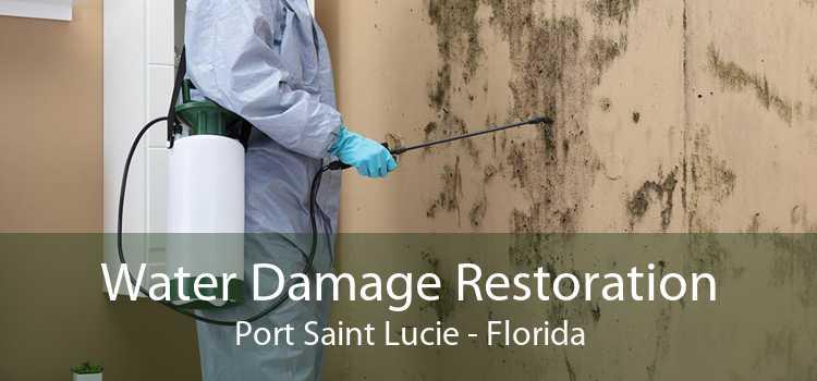 Water Damage Restoration Port Saint Lucie - Florida