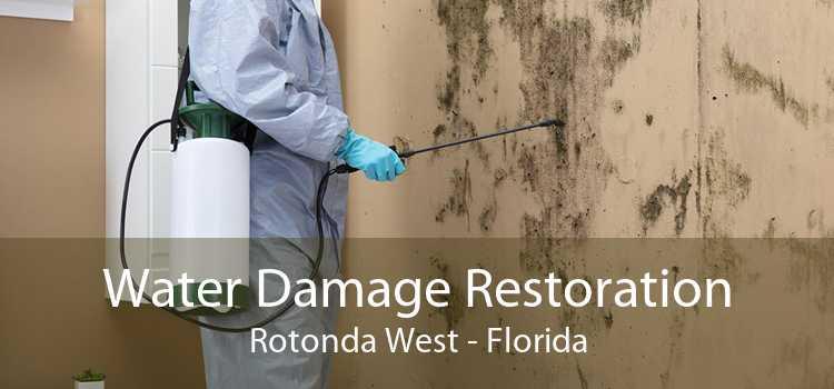 Water Damage Restoration Rotonda West - Florida