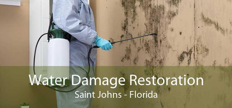Water Damage Restoration Saint Johns - Florida