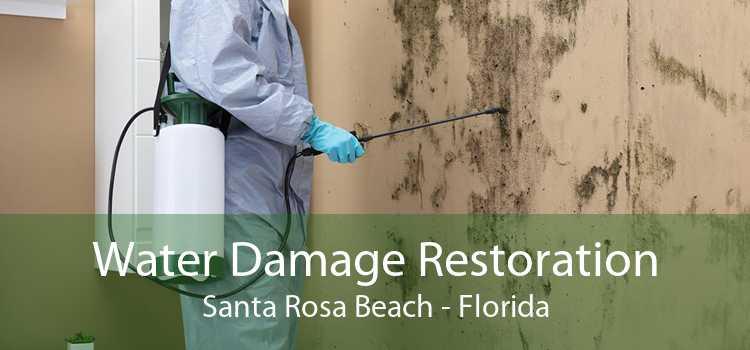 Water Damage Restoration Santa Rosa Beach - Florida