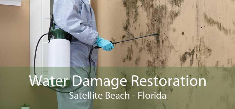 Water Damage Restoration Satellite Beach - Florida