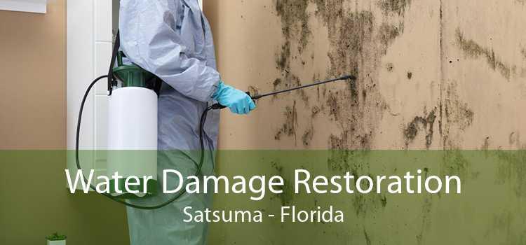 Water Damage Restoration Satsuma - Florida