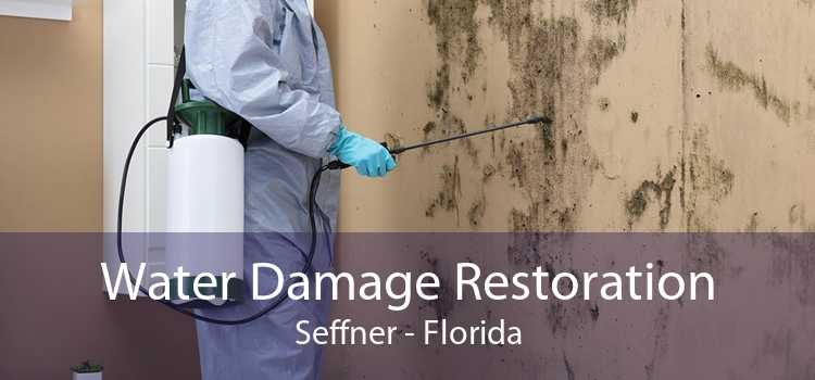 Water Damage Restoration Seffner - Florida