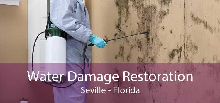 Water Damage Restoration Seville - Florida