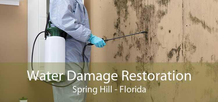 Water Damage Restoration Spring Hill - Florida