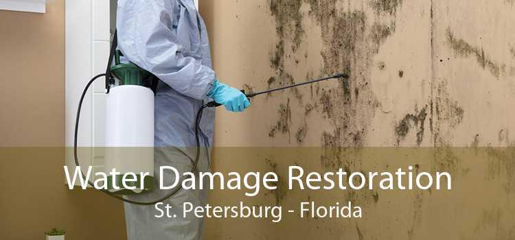 Water Damage Restoration St. Petersburg - Florida