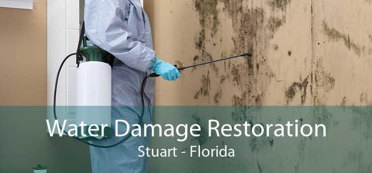 Water Damage Restoration Stuart - Florida