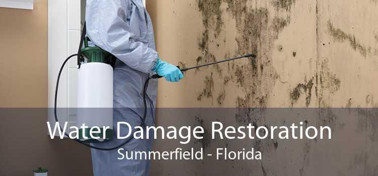 Water Damage Restoration Summerfield - Florida