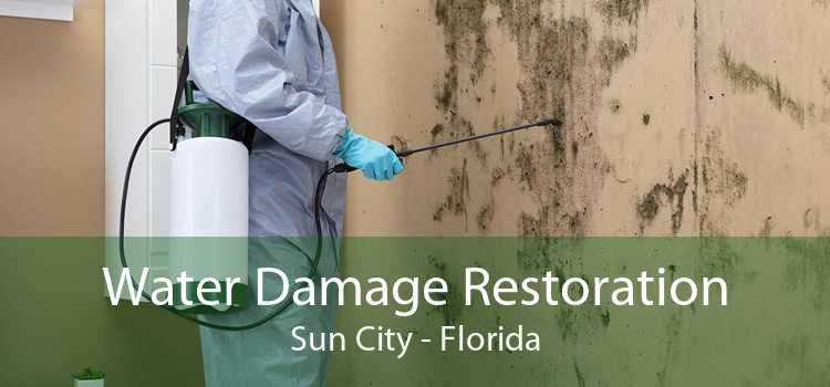 Water Damage Restoration Sun City - Florida