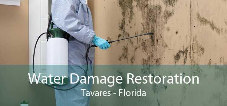 Water Damage Restoration Tavares - Florida