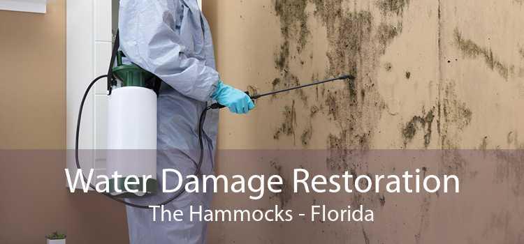 Water Damage Restoration The Hammocks - Florida