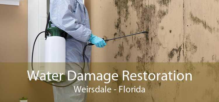 Water Damage Restoration Weirsdale - Florida