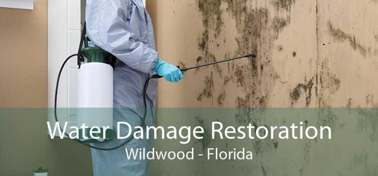 Water Damage Restoration Wildwood - Florida
