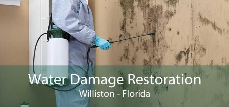 Water Damage Restoration Williston - Florida