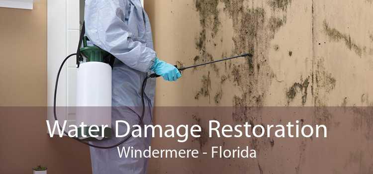 Water Damage Restoration Windermere - Florida