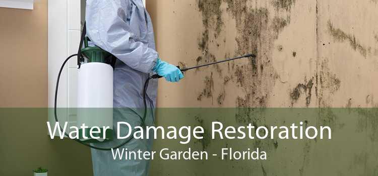 Water Damage Restoration Winter Garden - Florida