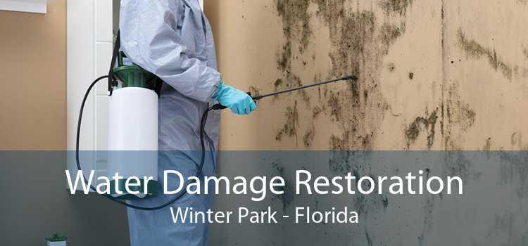 Water Damage Restoration Winter Park - Florida