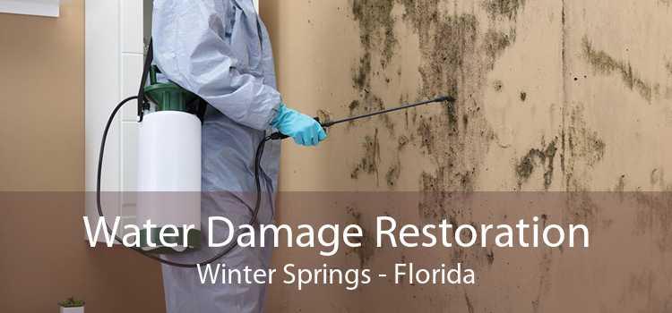 Water Damage Restoration Winter Springs - Florida