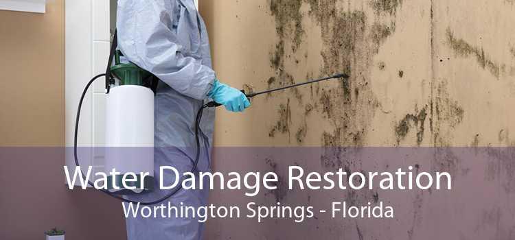 Water Damage Restoration Worthington Springs - Florida