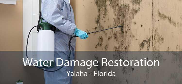 Water Damage Restoration Yalaha - Florida