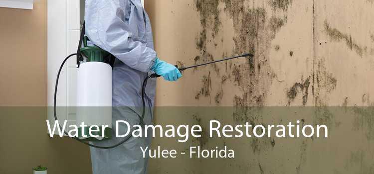 Water Damage Restoration Yulee - Florida