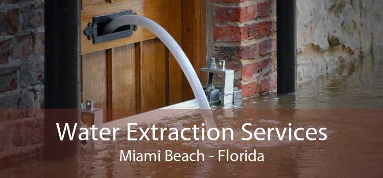 Water Extraction Services Miami Beach - Florida