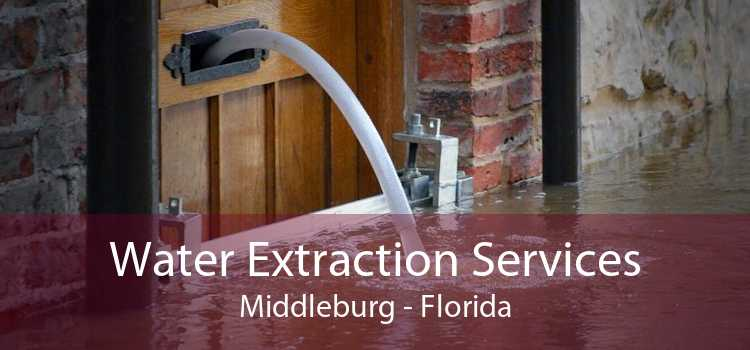 Water Extraction Services Middleburg - Florida