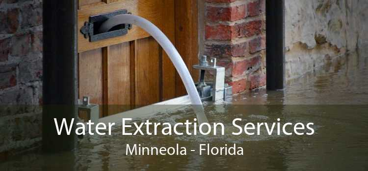 Water Extraction Services Minneola - Florida