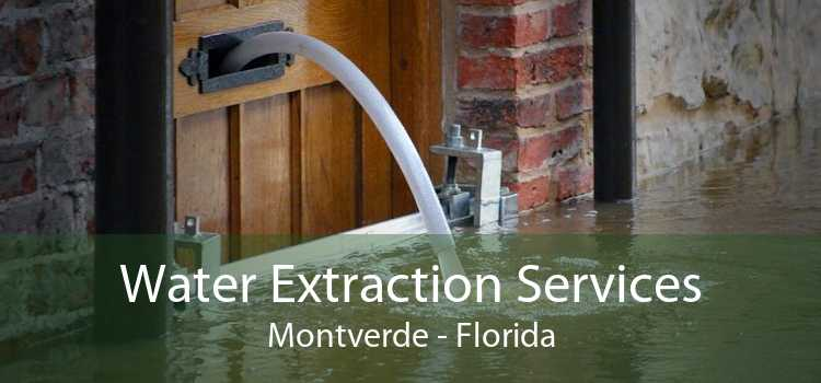 Water Extraction Services Montverde - Florida