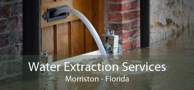 Water Extraction Services Morriston - Florida