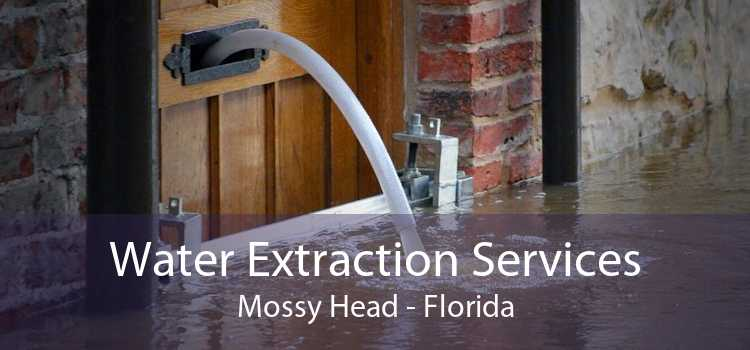 Water Extraction Services Mossy Head - Florida