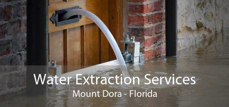 Water Extraction Services Mount Dora - Florida