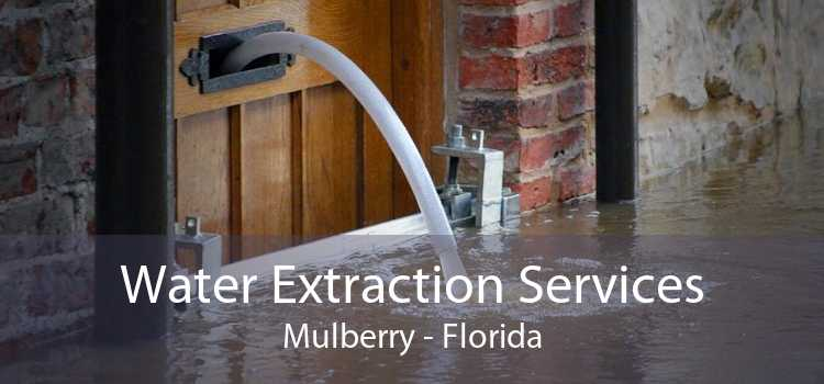 Water Extraction Services Mulberry - Florida