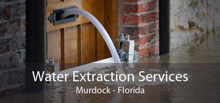 Water Extraction Services Murdock - Florida