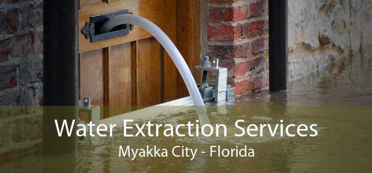 Water Extraction Services Myakka City - Florida