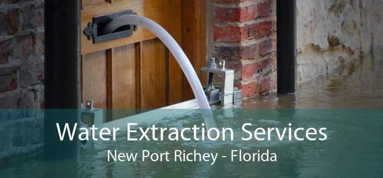 Water Extraction Services New Port Richey - Florida