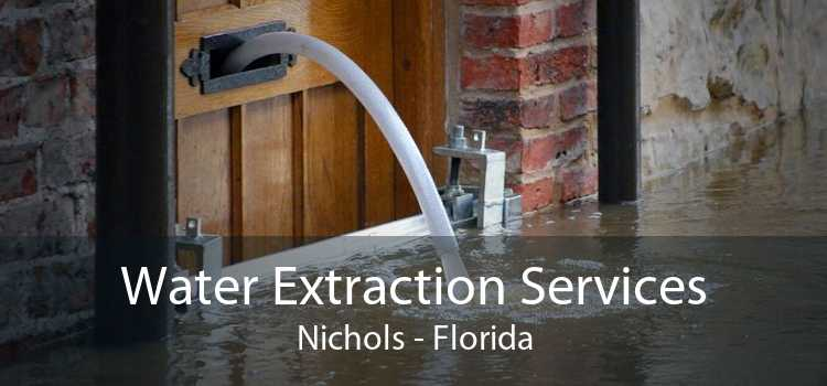 Water Extraction Services Nichols - Florida
