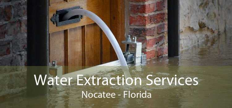 Water Extraction Services Nocatee - Florida