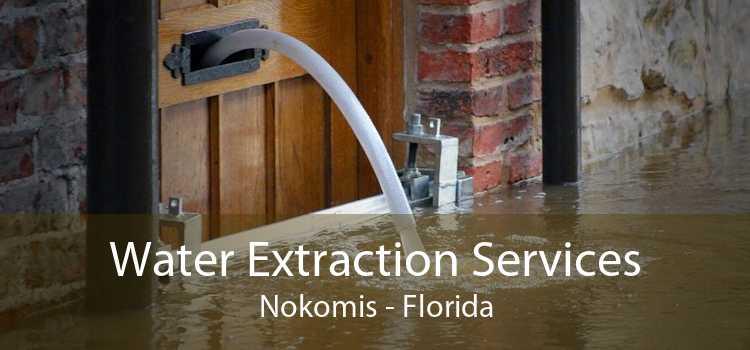 Water Extraction Services Nokomis - Florida