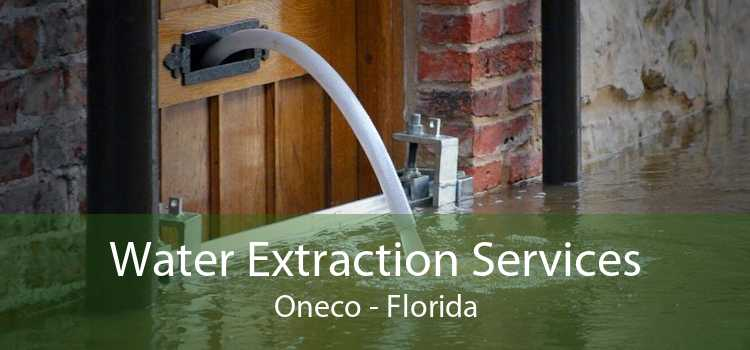 Water Extraction Services Oneco - Florida