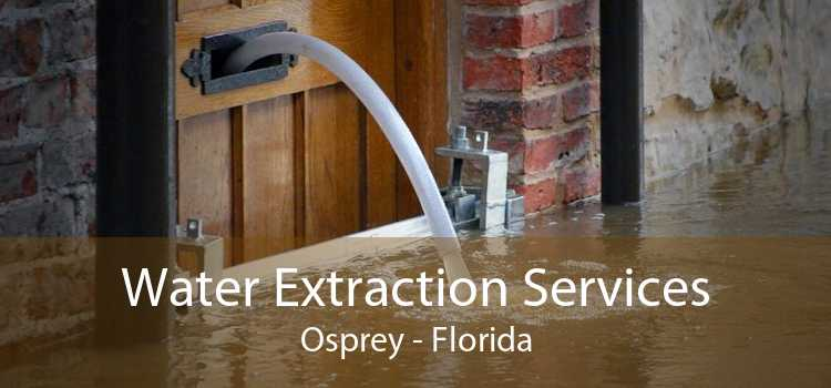 Water Extraction Services Osprey - Florida
