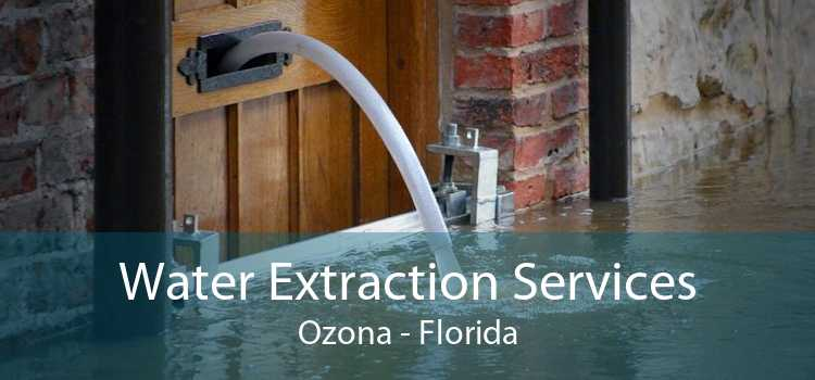 Water Extraction Services Ozona - Florida