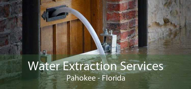 Water Extraction Services Pahokee - Florida
