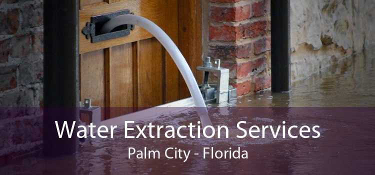 Water Extraction Services Palm City - Florida