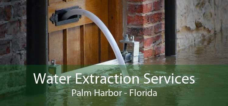 Water Extraction Services Palm Harbor - Florida