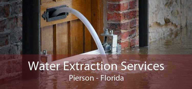 Water Extraction Services Pierson - Florida