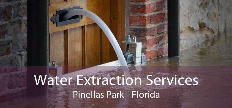 Water Extraction Services Pinellas Park - Florida